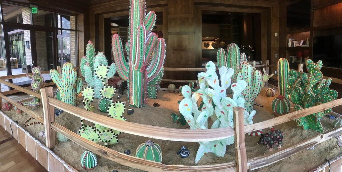 Southern Arizona Ritz-Carlton sugar cacti.